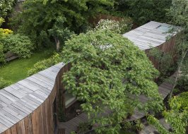 dezeen_Tree-House-by-6a-Architects_ss_5